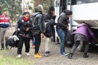 KÜÇÜKKÖY - 47 Mülteci Yakalandı