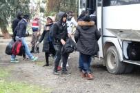 KÜÇÜKKÖY - Ayvalık'ta 47 Mülteci Yakalandı