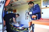 YOĞUN BAKIM ÜNİTESİ - Büyükşehir Belediyesi Hayvan Ambulansı 7/24 Hizmette