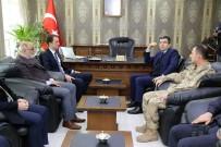 KÜLTÜR MANTARı - Gümüşhane Valisi Okay Memiş, Torul'da İncelemelerde Bulundu
