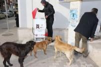ALPARSLAN TÜRKEŞ - Bafra Belediyesi Sokak Hayvanlarına Sahip Çıkıyor