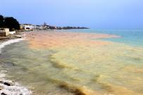 AŞIRI YAĞIŞ - Deniz iki renge büründü