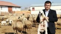ASGARI ÜCRET - (Özel) Aksaray'da Üreticiler 'Kendi İşinin Patronu Ol' Projesine Hazırlanıyor