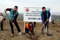 AHMET YAVUZ - Samsun'da Hükümlüler Fidan Dikti