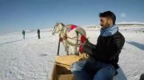 Buzla Kaplı Gölün Vazgeçilmezi Açıklaması 'Atlı Kızak'