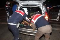 FAILI MEÇHUL - Çerkezköy İlçe Jandarma Güven Veriyor