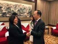 UÇAK TRAFİĞİ - DHMİ Genel Müdürü Ocak, Çinlilere İstanbul'un Yeni Havalimanını Anlattı