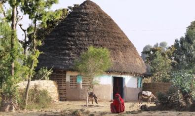 Etiyopyalıların 'Gocco'larda yaşam mücadelesi