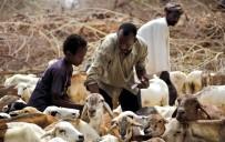 KONGO DEMOKRATİK CUMHURİYETİ - FAO Açıklaması '26 Ülkede Açlıkla Mücadele İçin 1 Milyar Dolar Yardım Gerekli'