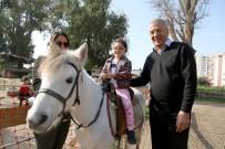 HAYVAN SEVGİSİ - Miniklerin At Sevgisi