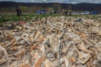 YENIYURT - Arazide Yüzlerce Hayvan Kafatası Bulundu