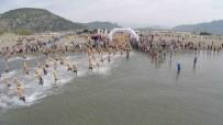 HASAN KARAÇELİK - Dalyan Açık Su Yüzme Yarışının Afişleri Özel Ressamlardan