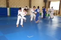 KAZDAĞLARI - Judo Büyük Kadınlar Milli Takımı Kazdağları'nda Kamp Yapıyor