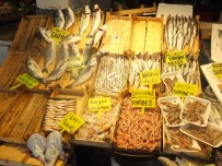 TROL - Balık Tezgahlarında 'Bako' Sürprizi