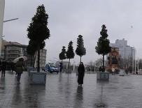 TAKSIM MEYDANı - Taksim'deki manolya ağaçları beğenildi