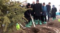 YARGITAY BAŞKANI - Yargıtay 150. Yıl Hatıra Ormanı İçin 1661 Fidan Dikildi