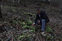 YAĞAN - Akdağ'da İlkbahar