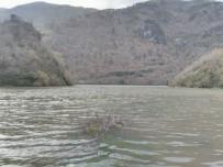 Baraj gölünde tekne battı: 1 kayıp, 1 yaralı