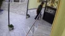 İTİRAF - Camilerden Hırsızlık Yapan Zanlı Yakalandı