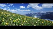 TANITIM FİLMİ - Kaçkar Dağları Tanıtım Filmine Yoğun İlgi