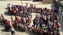 Minik Eller Pazar Kurdu