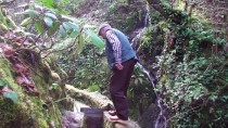 GÜMELI - Asırlık Su Değirmeninin Gönüllü İşçisi