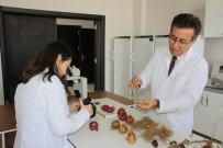 MUSTAFA KEMAL ÜNIVERSITESI - Bitki Sağlığı Kliniği Uygulama Ve Araştırma Merkezi Bölgede Öncü