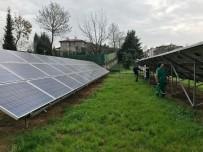 ENERJİ SANTRALİ - Kendi Elektriğini Üreten Parkın Güneş Enerji Panelleri Bakıma Alındı