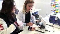 KANSERLİ HÜCRE - Öğrencilerin 'Kanser' Projesine TÜBİTAK'tan Destek