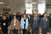 ORTAÖĞRETİM - Ayvalık'ta Proje Döngüsü Yönetimi Eğitimi Semineri