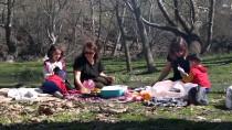 OKSIJEN - Domaniç Dağlarına Bahar İlgisi