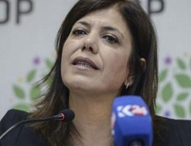 HDP'li Beştaş'ın Türk bayrağı rahatsızlığı
