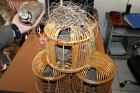 KıNALı - Iğdır'da Kaçak Avlanmaya Para Cezası