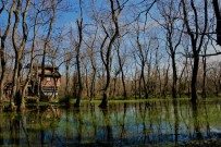 GÖLLER - Kızılırmak Deltası Doğal Güzelliğiyle Göz Kamaştırıyor