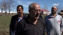 HASAN YILMAZ - Çatısında 'Leylek Yuvası Var' Diye Evleri Yıkmıyorlar