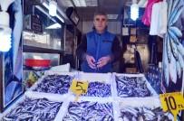 BALIKÇI ESNAFI - Hamsi fiyatı hızla düşüşe geçti
