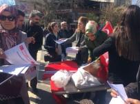 KıNALı - MHP Kadın Kolları Bayrak Dağıttı