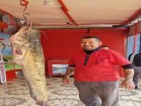 SUDAN - Oltayla Yakalandı Açıklaması Tam 45 Kilo !