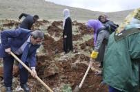 YEŞİLAY HAFTASI - Yeşilay'dan Üniversite Kampüsünde Ağaçlandırma Etkinliği