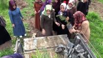 HASAN BASRI GÜZELOĞLU - Diyarbakır'da Tenzile Erdoğan Hatıra Ormanı Oluşturuldu