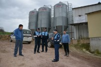 FOSEPTİK ÇUKURU - Kartepe'de Bulunan Tavuk Çiftliklerinde Sıkı Denetim