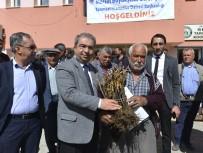 İSMAİL TEPEBAĞLI - Mersin'de Üreticiye 5 Bin 200 Adet Aşılı Asma Fidanı Dağıtıldı