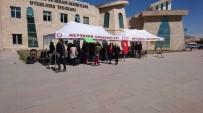 KAYNAR - NEVÜ Öğrencileri Zeytin Dalı Harekatı'na Destek İçin Kermes Düzenledi