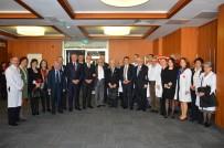 SIVAS KONGRESI - Prof. Dr. Hacısalihoğlu Açıklaması 'Tıbbiyeliler Bugün De İstiklal Meşalesi'