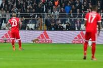 OLIVER - Beşiktaş Bayern Münih maçında sahaya kedi girdi