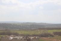 ÇATIŞMA - Afrin'e 600 Metre Kaldı