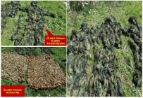 KESKİN NİŞANCI - PKK'ya Bir Darbe Daha Açıklaması 26 Hedef Kullanılamaz Hale Getirildi