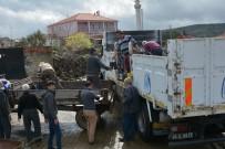 ÜÇPıNAR - Yunusemre'de Fidan Dağıtımları Sürüyor