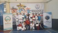 İMAM HATİP LİSESİ - Ak Evler Spor Salonları Öğrencileri Takım Halinde Birinci Oldu