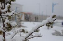 YAĞAN - Ardahan'da Kar Sürprizi